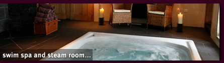 swim spa and steam room...